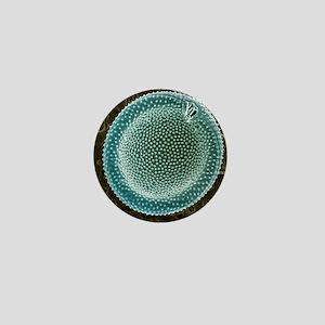 Dinoflagellate, SEM - Mini Button