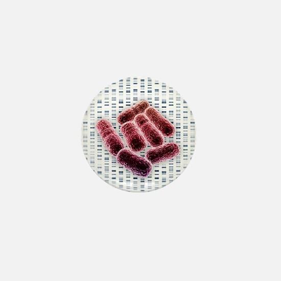 E coli bacteria, artwork - Mini Button