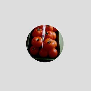 Genetically modified tomatoes - Mini Button