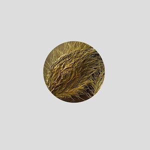 Seed of Old Man's Beard, SEM - Mini Button