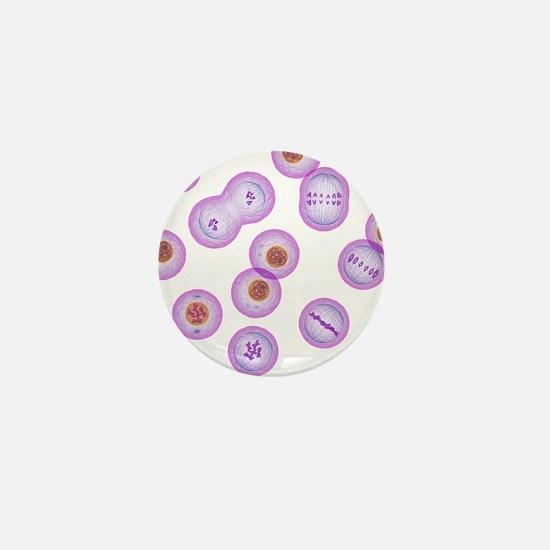 Mitosis, artwork - Mini Button