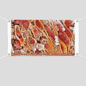 Mitochondria, SEM - Banner