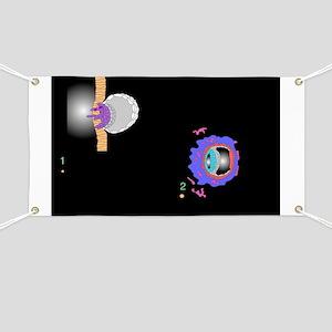 Blastocyst implantation, artwork - Banner