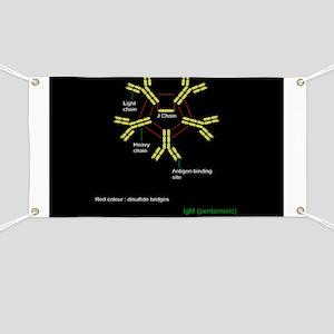 Immunoglobulin pentamer, artwork - Banner