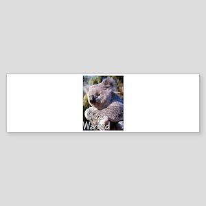 koala Sticker (Bumper)