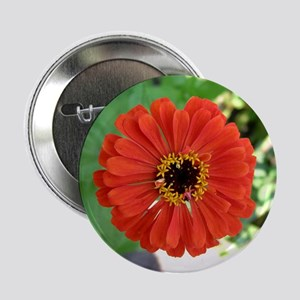 Zinnia Button