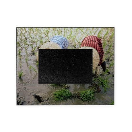Rice farmers - Picture Frame