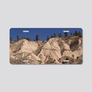 nyon - Aluminum License Plate