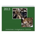 2013 Bengal Cat Wall Calendar