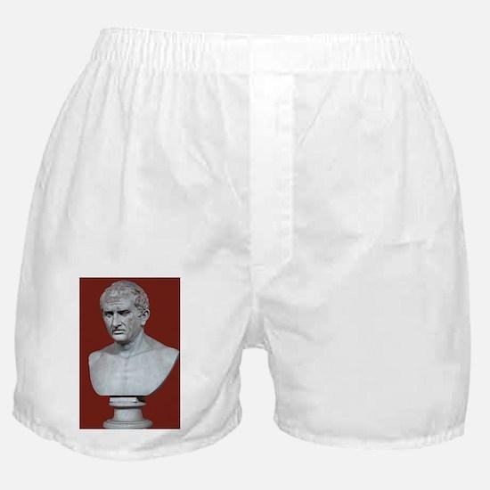 Cicero - Boxer Shorts