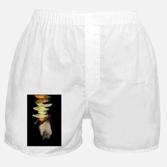 Egyptian rousette bat - Boxer Shorts