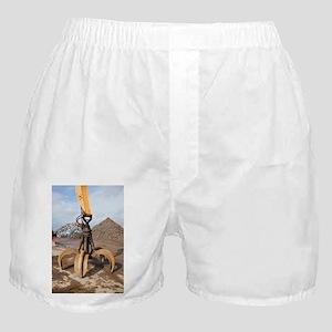 Crane grabber claw - Boxer Shorts