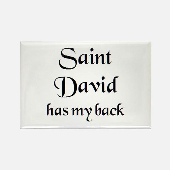 saint david Rectangle Magnet