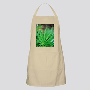 Cannabis leaves - Apron
