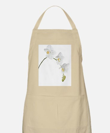 Orchid flowers (family Orchidaceae) - Apron