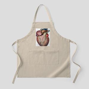 Heart - Apron