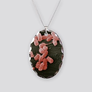 E. coli bacteria, SEM - Necklace Oval Charm