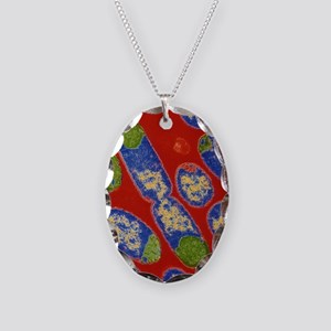 E. coli bacteria - Necklace Oval Charm