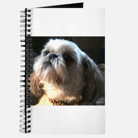 Cute Tzu puppies Journal
