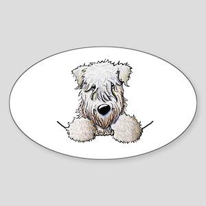 SC Wheaten Pocket Sticker (Oval)