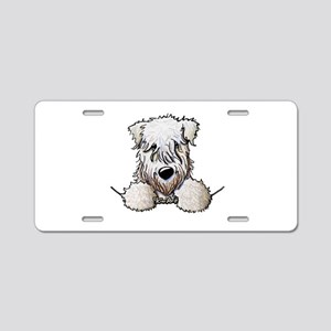 SC Wheaten Pocket Aluminum License Plate
