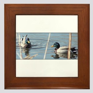 Birds of a Feather Framed Tile