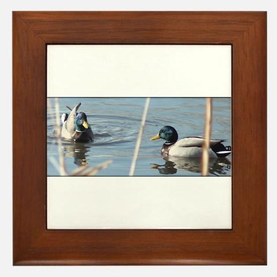 Birds of a Feather Framed Tile