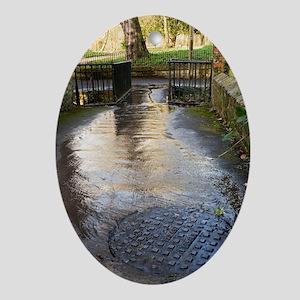 Raw sewage - Oval Ornament