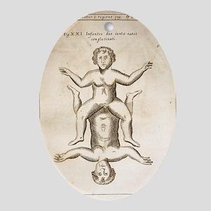 1662 Schott conjoined infants - Oval Ornament