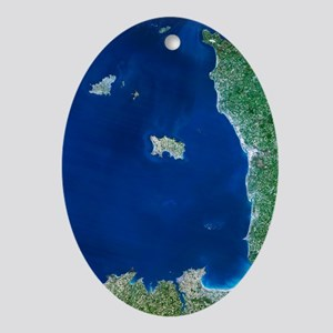 Channel Islands, satellite image - Oval Ornament