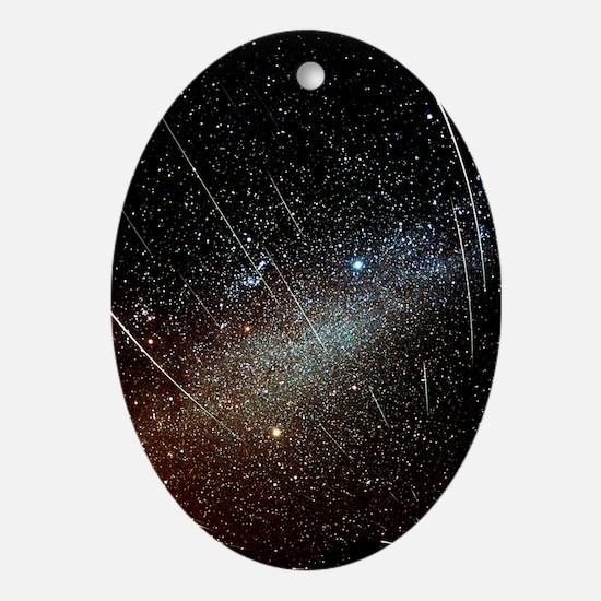 Leonid meteors - Oval Ornament