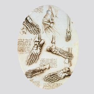 Foot anatomy by Leonardo da Vinci - Oval Ornament