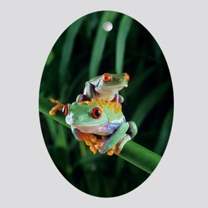 Red-eyed tree frogs - Oval Ornament