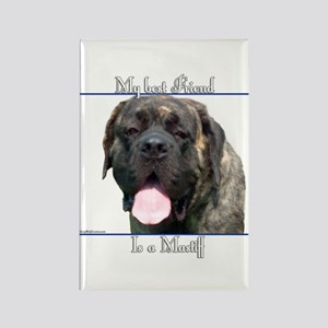 Brindle 18 Rectangle Magnet