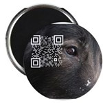 """QR link to ABTC Health pages 2.25"""" Magnet ("""