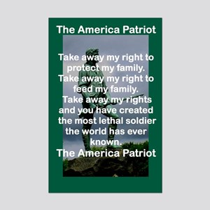 THE AMERICAN PATRIOT Posters