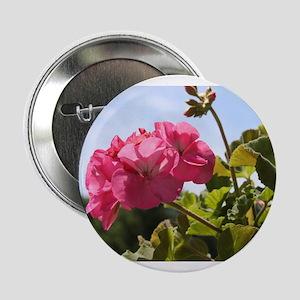 """Pink Geranium in Virginia Sunshine 2.25"""" Button"""