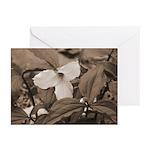 Trillium Greeting Cards (Pk of 10)