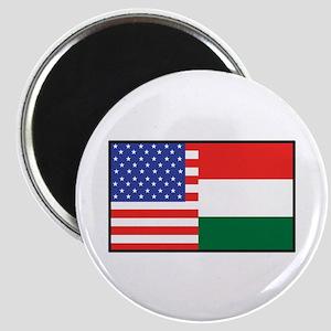 USA/Hungary Magnet