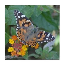 Butterfly: Painted Lady Tile Coaster