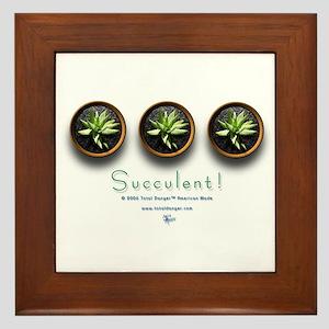 Succulent #1 Framed Tile