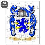 Bagnall Puzzle