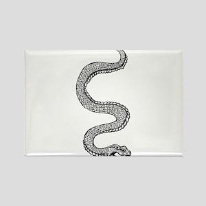 Snake Rectangle Magnet