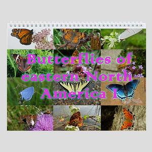Butterflies Of Eastern North America 1