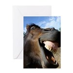 Funny Horse Cafe-MaDCoLT Smile Greeting Card
