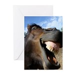 Funny Horse Cafe-MaDCoLT Smile Greeting Cards (Pk