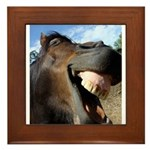 Funny Horse Cafe-MaDCoLT Smile Framed Tile