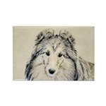 Shetland Sheepdog Rectangle Magnet (100 pack)