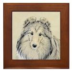 Shetland Sheepdog Framed Tile