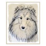 Shetland Sheepdog Small Poster